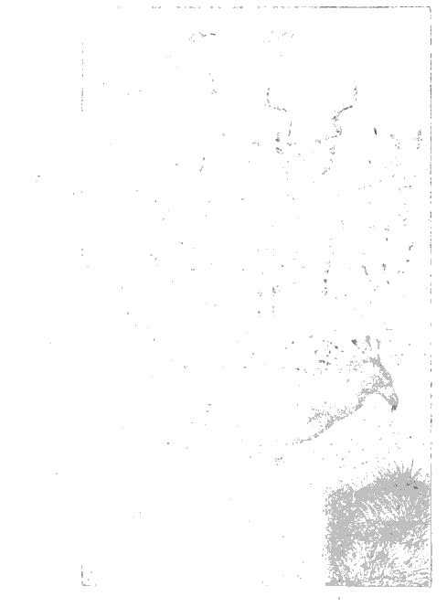 [merged small][ocr errors][ocr errors][ocr errors][merged small][ocr errors][ocr errors][ocr errors][graphic][graphic]
