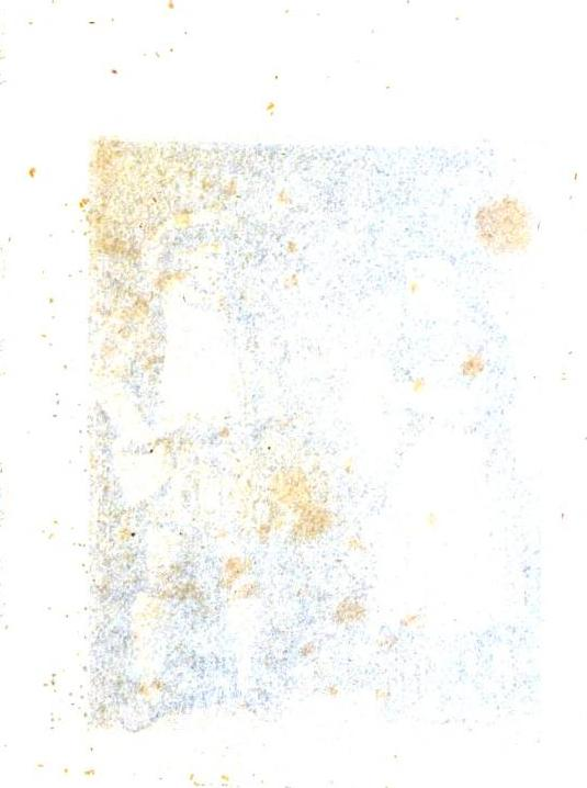 [ocr errors][graphic][merged small][ocr errors]